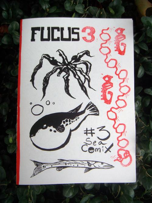 058fucus03