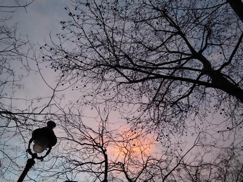 Mañana de invierno en Bastilla, París