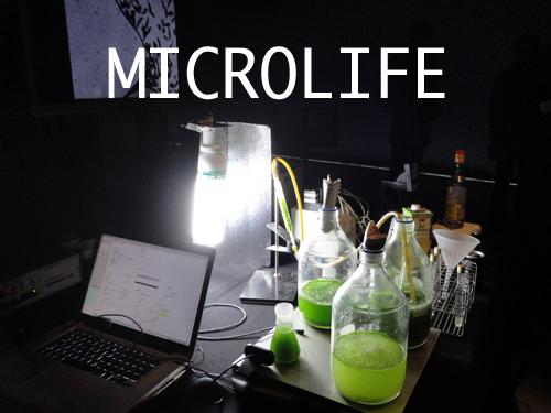 Micro-vie