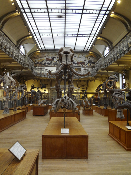 794paleontologie